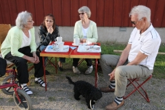 2015-07-29 Dumkys kakbuffé 035